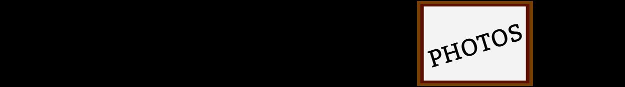 bulklogo